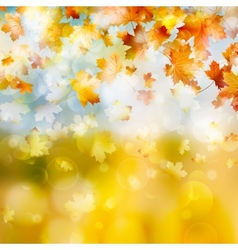 Autumn maple leaves background EPS 10 vector image
