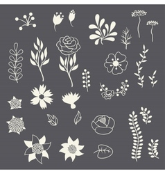 Romantic floral elements various flowers in retro vector