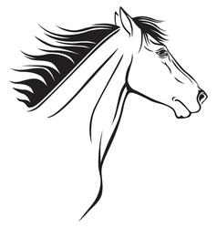 Horse nose vector