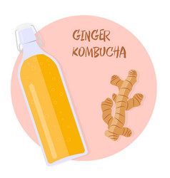 kombucha tea with ginger in a vintage bottle vector image