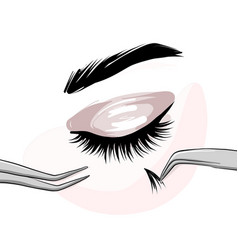 lash extension beautican procedure lash stylist vector image