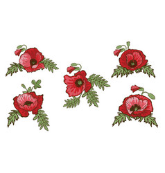 Set of hand drawn red poppies isolated on white vector