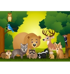 wild animal cartoon vector image vector image