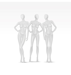 Set of Isolated Female Mannequins vector image vector image
