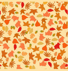 brown spring summer maple leave vector image