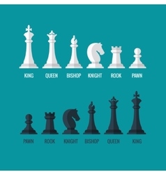 Chess pieces king queen bishop knight rook pawn vector