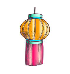 chinese lantern cultural decoration color vector image