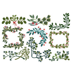 collection green leaves wreaths natural design vector image