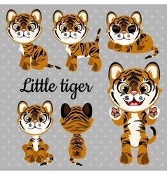 Emotions baby tiger on a gray background vector