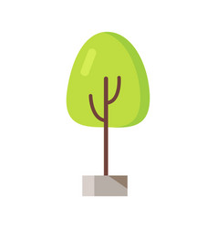 green tree in pot icon vector image