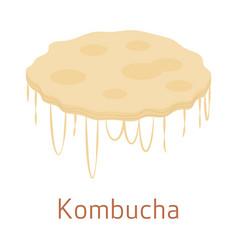 kombucha scoby mushroom on a white background vector image