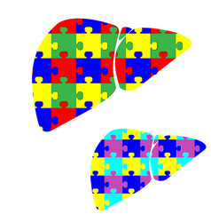 liver hepar with color puzzles vector image