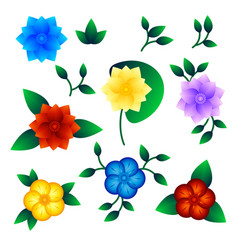 set of exotic flower vector image