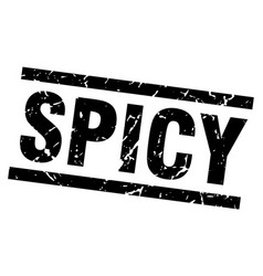 square grunge black spicy stamp vector image