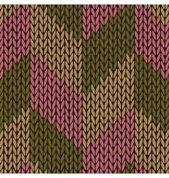 Color Knitted Pattern vector image vector image