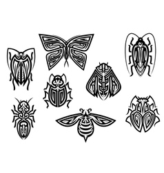 Insect tattoos in tribal style vector image vector image