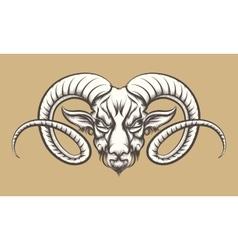 Head of A Ram vector image