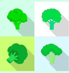 broccoli cabbage icon set flat style vector image