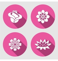 Flower icons set Rose chamomile blue poppy vector image