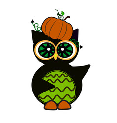 Halloween owl pumpkin art face isolate on white vector