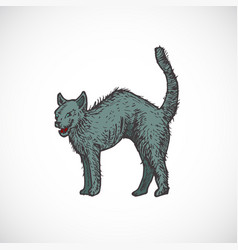 hand drawn colorful halloween scary evil cat vector image