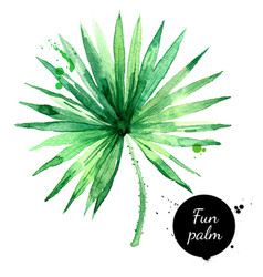hand drawn sketch watercolor tropical leaf fun vector image