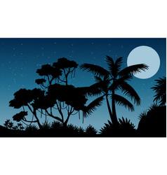 landscape jungle at the night silhouette style vector image