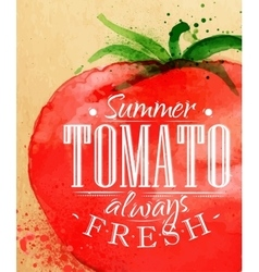 Poster tomato vector image