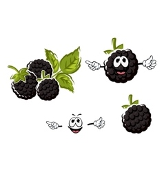 Ripe cartoon blackberries fruits characters vector image
