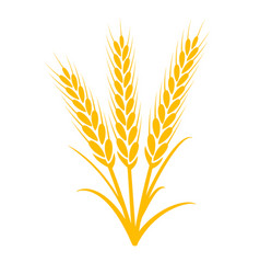 wheat plant grain icon wheat vector image