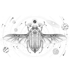 Witchcraft card with solar system and june beetle vector