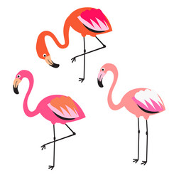 flamingo flat style vector image vector image