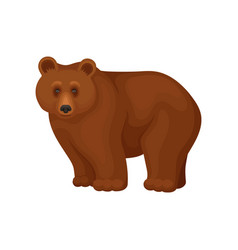 cartoon character of large brown bear standing on vector image
