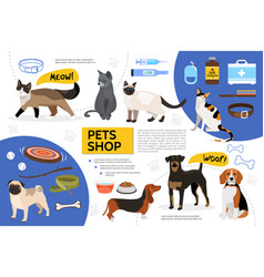 flat pet shop infographic template vector image