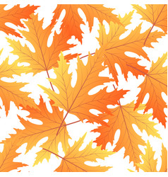 Maple autumn leaf seamless pattern fall vector