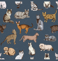 Seamless pattern with 16 hand drawn purebred cats vector