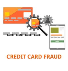 credit card fraud vector image