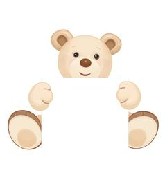 bear blank vector image vector image