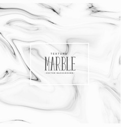 Beautiful black and white marble texture vector