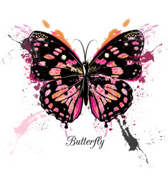 fashion detailed butterfly in vintage style vector image