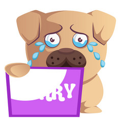 Pug with sorry sign on white background vector