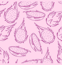 seamless pattern sketch dragon fruits vector image