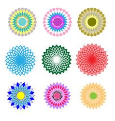 set floral pattern vector image