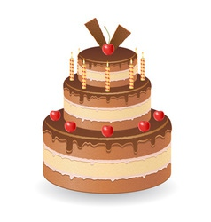 cake 02 vector image