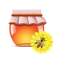 Honey and a bee on the flower vector image