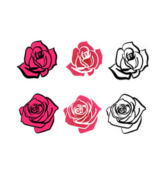 a set of roses of different shapes vector image