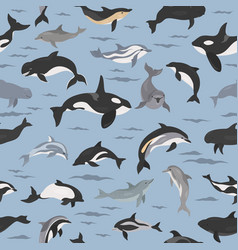 dolphins seamless pattern marine mammals vector image