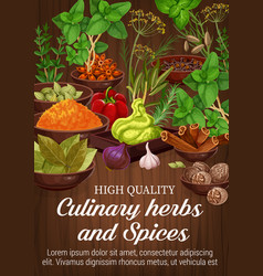 Herbs and spices on wooden background vector