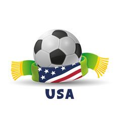 soccer ball with scarf and usa flag vector image
