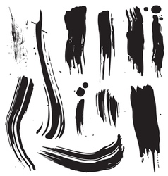 Splat brush vector image